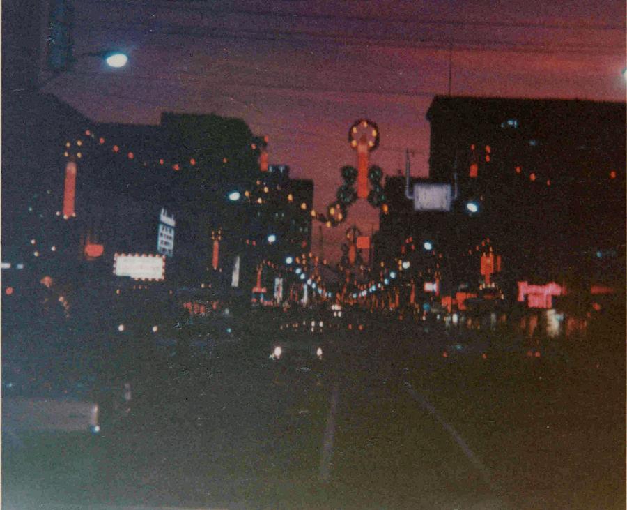 Christmas Lights Raleigh