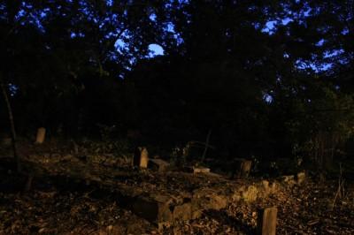Oberlin Cemetery - 3